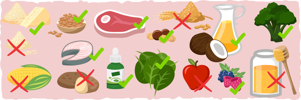 węglowodany na diecie ketogenicznej