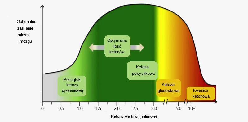optymalny poziom ketozy
